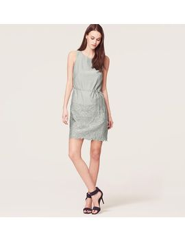 scalloped-embroidered-shift-dress by loft