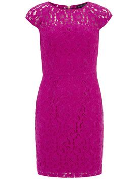 fuchsia-pink-lace-pencil-dress by dorothy-perkins
