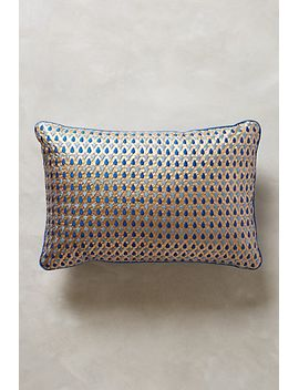 embroidered-tarik-silk-pillow by anthropologie