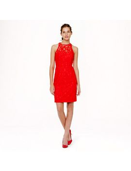 petite-pamela-dress-in-leavers-lace by jcrew