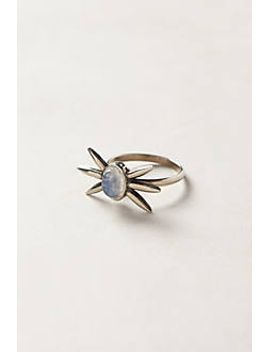 moonstone-spur-ring by anthropologie