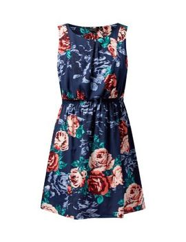 blue-rose-print-sleeveless-skater-dress by new-look