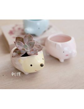 cute-animal-ceramic-air-plant-container-succulent-herb-pot-garden-planter-home-decoration by skhappyshopping