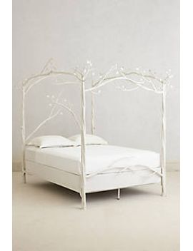 forest-canopy-bed by stone-county-ironworks