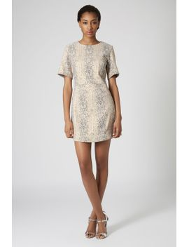 snake-jacquard-a-line-dress by topshop