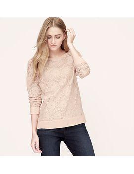 sheer-lace-sweatshirt by loft