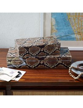 flora-+-fauna-box---python by west-elm