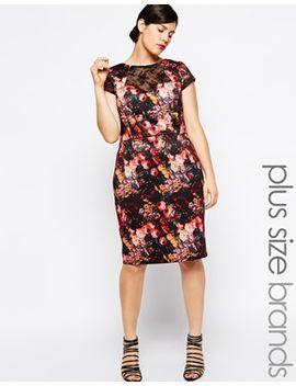 paper-dolls-plus-dark-floral-lace-insert-pencil-dress by paper-dolls-plus