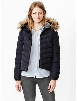 primaloft®-luxe-fur-trim-puffer by gap