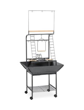 prevue-pet-products-small-parrot-playstand-3181-black-hammertone,-17625-inch-by-16-1_2-inch-by-59-inch by prevue-hendryx