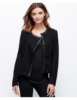 petite-knit-moto-jacket by ann-taylor