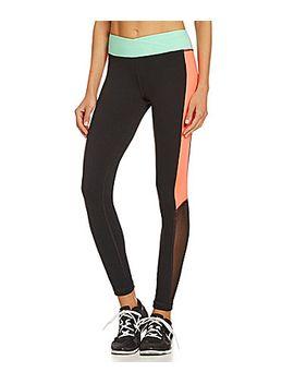 gianni-bini-berry-mesh-inset-leggings by generic
