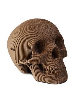 vince-human-skull-special-ed by cardboard-safari