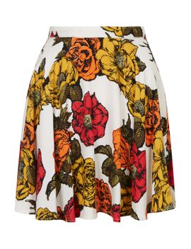 **simone-skater-skirt-by-motel by topshop