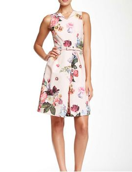 Deavon Oil Painting Dress by Ted Baker