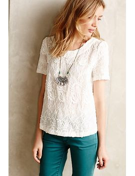 embroidered-lace-tee by meadow-rue
