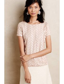 plume-point-tee by anthropologie