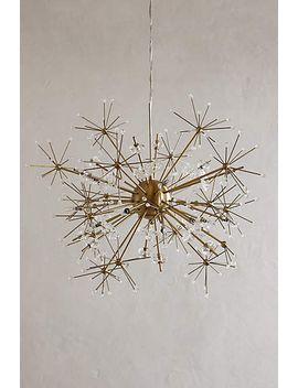 dandelion-orbit-chandelier by anthropologie
