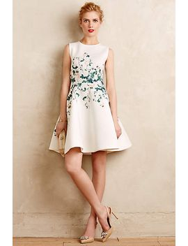 sweetheart-roses-dress by erin-fetherston