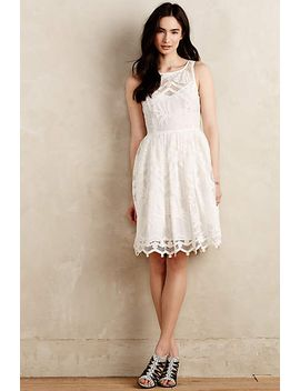 pina-lace-dress by anthropologie