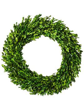 """212""""-dried-boxwood-leaves-wreath-green---smith-&-hawken by shop-collections"""