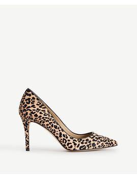 ANN TAYLOR Mila Leopard Print Haircalf Pumps
