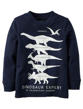 long-sleeve-glow-in-the-dark-dinosaur-expert-graphic-tee by carters