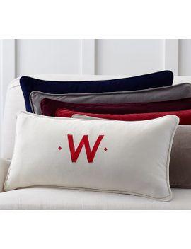 solid-velvet-lumbar-pillow-cover by pottery-barn