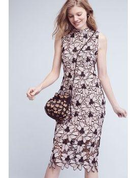 mirian-lace-dress by shoshanna