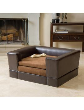 Rover Midsize Chocolate Brown Leather Dog Sofa Bed by Gdf Studio