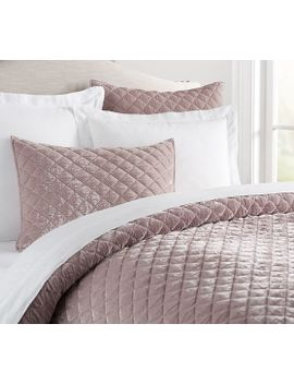 nia-velvet-quilt-&-sham---rose by pottery-barn