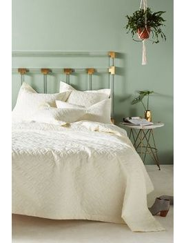 peacock-alley-bristol-coverlet by peacock-alley