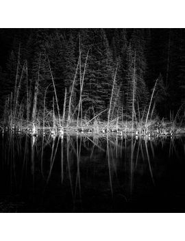 kananaskis-landscape-photography,-highway-40,-black-and-white-reflections-of-trees-in-water by etsy