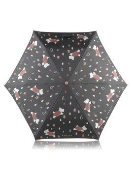 Its Raining Coats On Dogs by Radley London