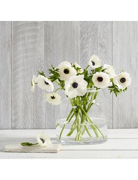 Aurelie Small Vase by The White Company